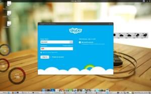 Skype 4.2 Ubuntu 13.04